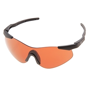 Picture for category Ballistic Glasses and Shades